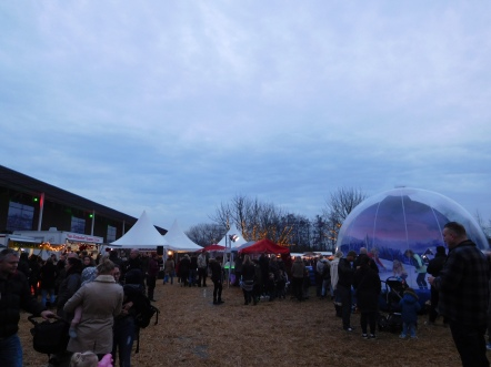 kerst in leeghwaterpark (1)